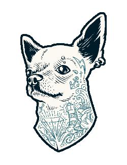 Tattooed dog