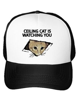 Sapca personalizata Ceiling cat Alb