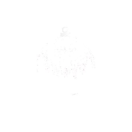 Tricou Winter ball