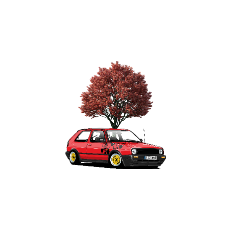 Tricou Golf mk2