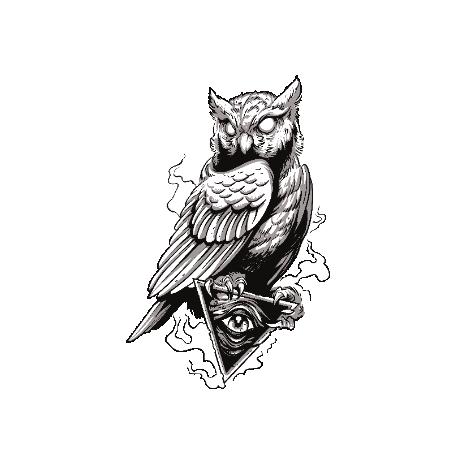 Tricou Owl