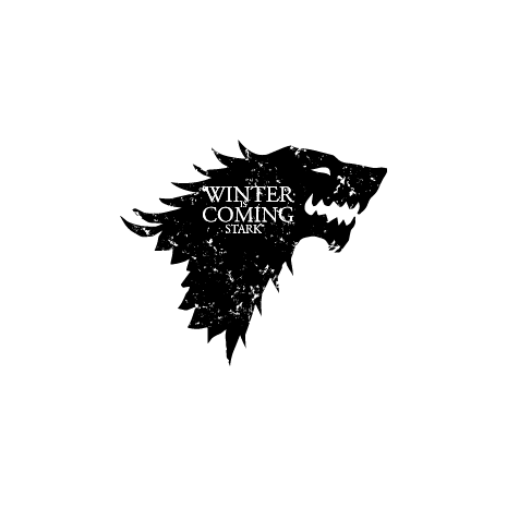Tricou Winter is coming Stark
