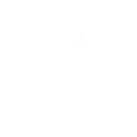 Tricou Darkside rider