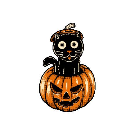 Tricou Pumpcat