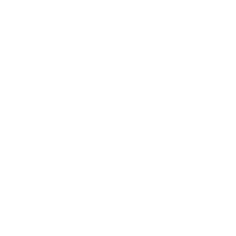Tricou Irreplaceable