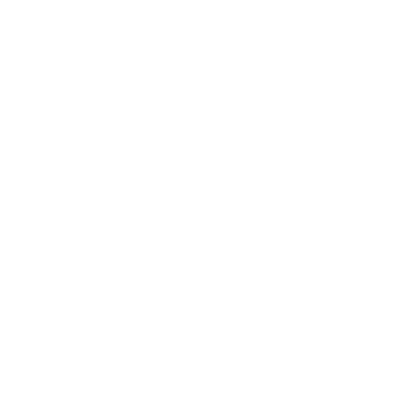 Tricou Holiday workout